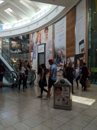 1,766 SF Shopping Centre Unit for Rent  |  Unit 211, Intu Chapelfield, Norwich, NR2 1SB